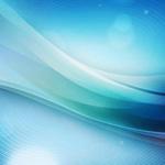 Обыкновенный синеязыкий сцинк, тиликва