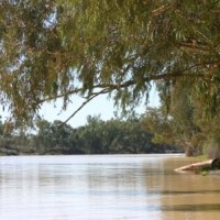 Река  Купер-Крик (Cooper Creek)