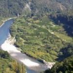 Река Мерчисон