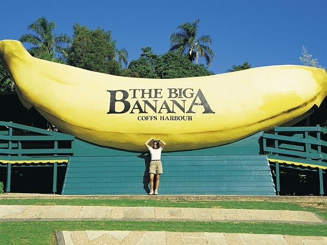 Большой Банан в Кофс Харбор, Австралия.