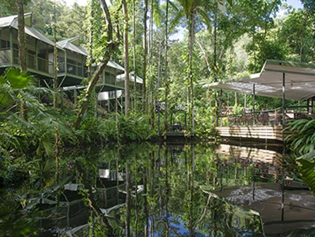 Дейнтри Эко Лоджи и Спа / Daintree Eco Lodge and Spa - Кэрнс, штат Квинсленд.