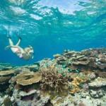 Большой Барьерный риф в Австралии назвали лучшим местом в мире для посещения