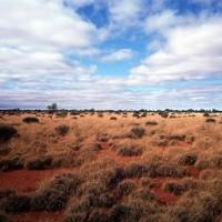 Большая Песчаная пустыня (Great Sandy Desert)