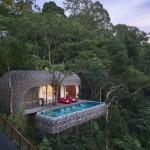 Лучшие в мире отели на деревьях