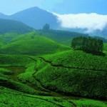 Лучшие советы для путешественников по Южной Индии