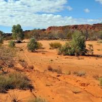 Малая Песчаная пустыня (Little Sandy Desert)