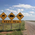 10 лучших автомобильных маршрутов по Австралии, ч.2: Налларбор, Кингс Каньон