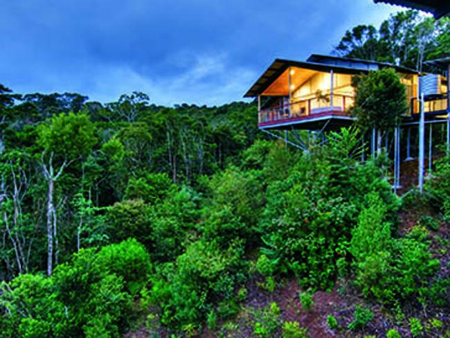 О'Райли Райнфорест Ретро / O'Reilly's Rainforest Retreat - Голд-Кост (Золотой Берег), штат Квинсленд.