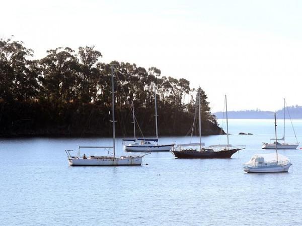 Залив Пеперминт, Тасмания.