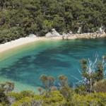 Лучшие кемпинги в штате Виктории: Мыс Вильсона и Большая Океанская дорога, ч4