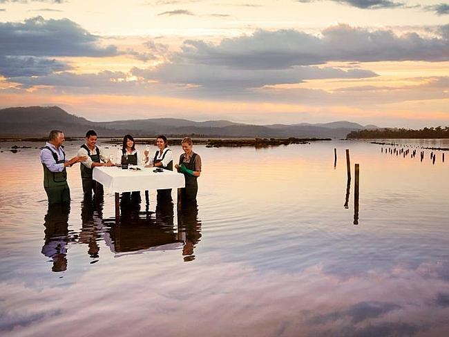 Роскошные лоджи Saffire Freycinet в Тасмании.