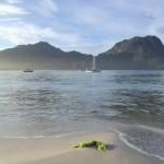 Отдых в кемпинге в Тасмании: Восточное Побережье, Колес Бей, Национальный Парк Фрейсине, ч.4