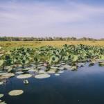 Национальный парк Какаду: Австралийские малоисследованные места раскрывают свои секреты, ч2