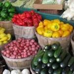 Импорт овощей и фруктов в Австралию набирает обороты