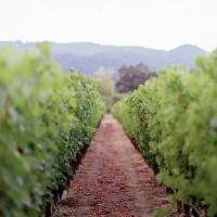 Выходные в Виктории: Дейлсфорд -самый романтичный город Австралии